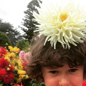 Finny Bailey with Dahlia Flower